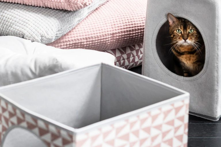 IKEA Singapore now offers furniture for cats and dogs